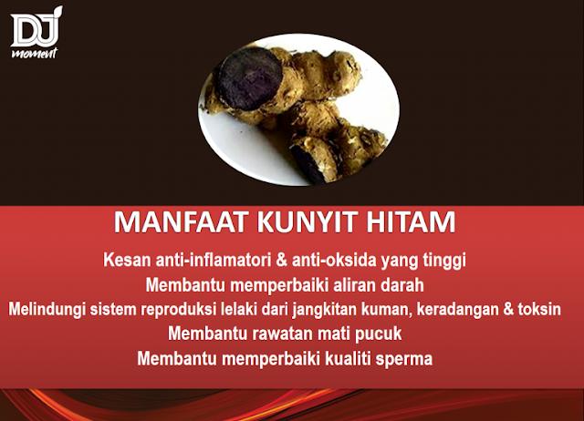 KUNYIT HITAM