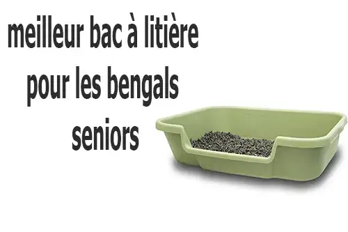 best litter box for senior bengals