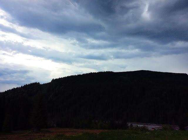 Карпаты, Буковель, горы, лес, природа, май, Украина, природа, погода, путешествия