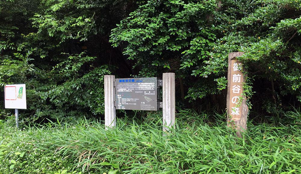 家康の正妻築山殿の討たれた佐鳴湖東岸小藪の辺り一帯は「御前谷」と呼ばれる(2016年5月29日撮影)