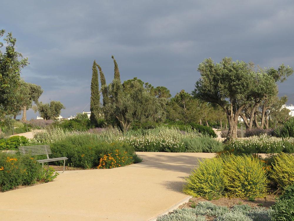 Jardín con plantas mediterráneas tolerantes a la sequía