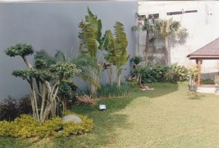 Galeri Taman - Tukang Taman Surabaya 90