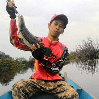 Spot ikan kerandang di Sebangau Kalimantan Tengah