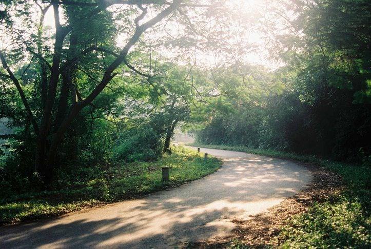 Hình ảnh vườn quốc gia Ba Vì