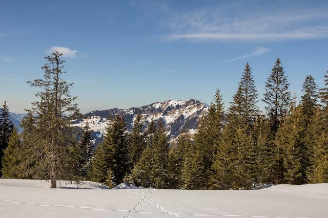 Schneeschuhtour tiefenbacher eck bad hindelang allgäu 14