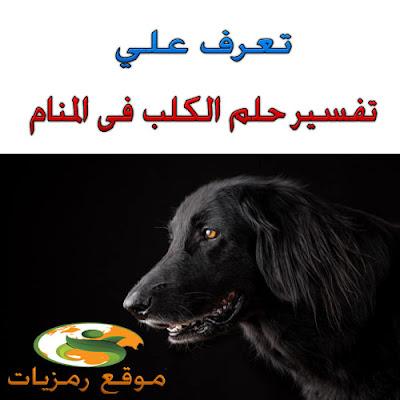 تفسير حلم الكلب فى المنام