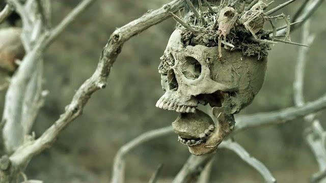 Bone Tomahawk S. Craig Zahler Screenshooter Skull