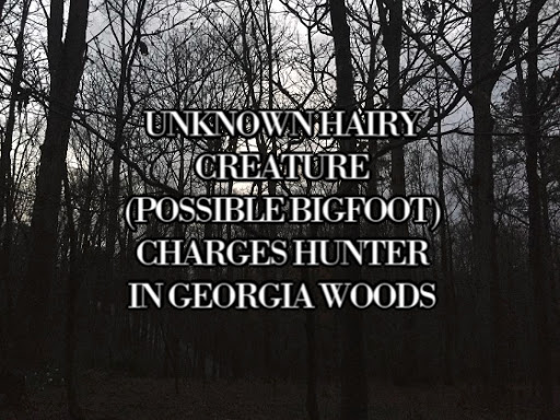 Unknown Hairy Creature (Possible Bigfoot) Charges Hunter in Georgia Woods