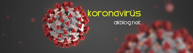 Corona Virüsü (Koronavirüs) Nasıl Bulaşır