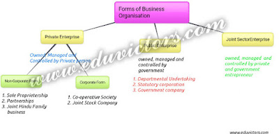 CBSE Class 11 - Business Studies - Forms of Business Organisation (#cbseNotes)