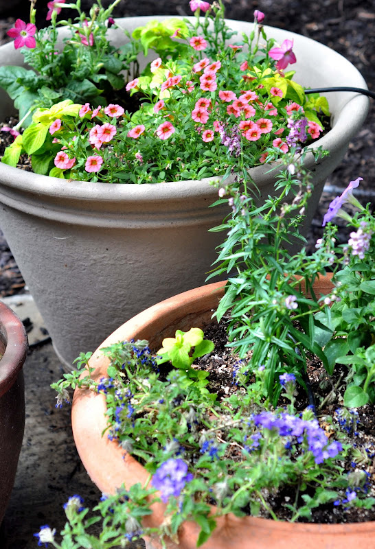 Patio flower pots ideas. outdoor planters northfield senior center ...