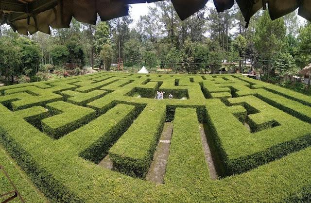 Taman Labirin, taman labirin malang, wisata malang , harga tiket masuk