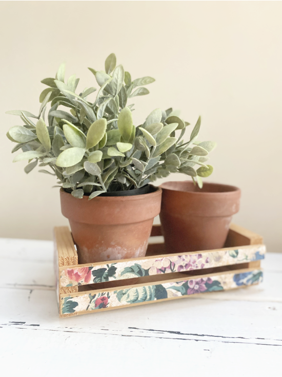 wooden crate with 2 pots and 1 plant