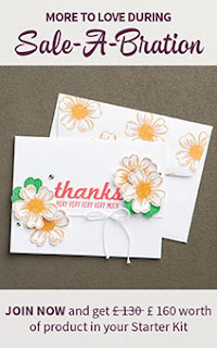 http://www.stampinup.net/esuite/home/fionawhitehead/promotions