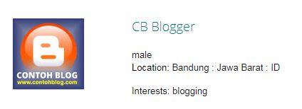 cb blogger