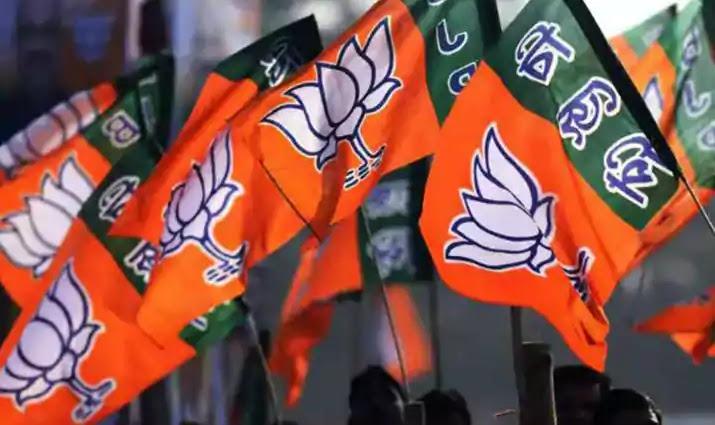 Bharatiya Janata Party (BJP) Flag