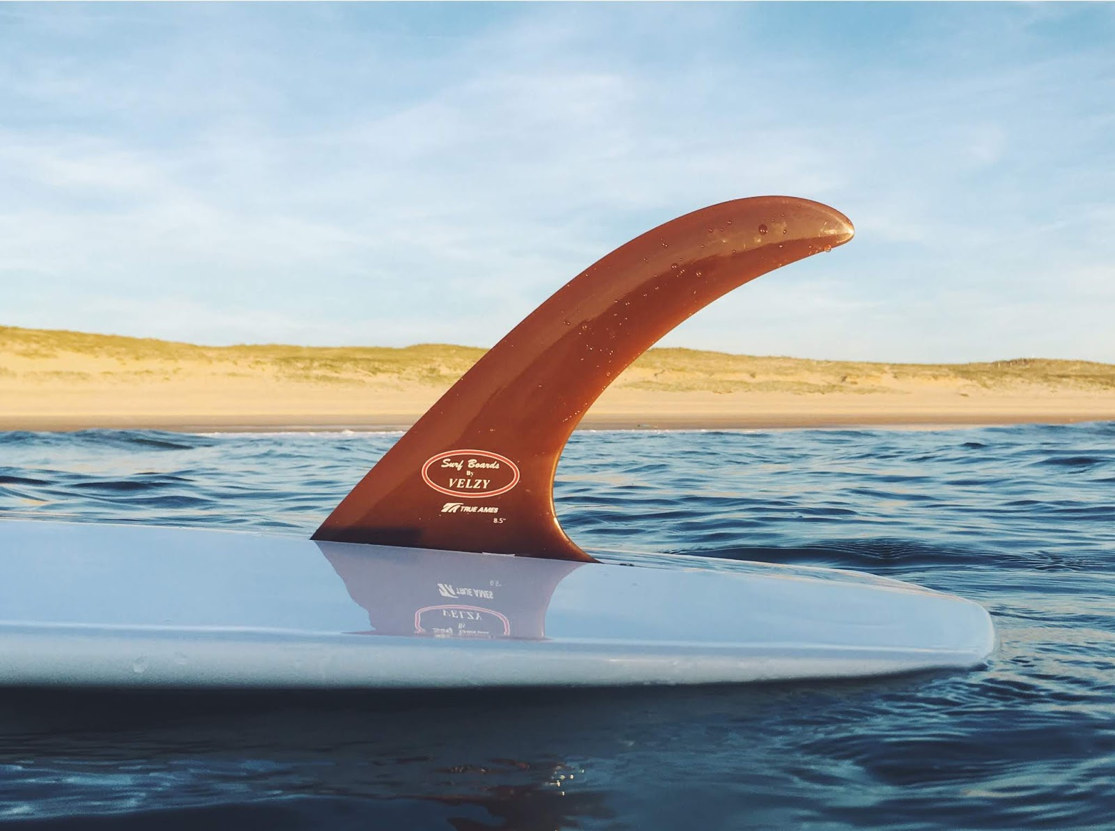 The Velzy fin on the Vee Bottom surfoard - True Ames and Surfin Estate