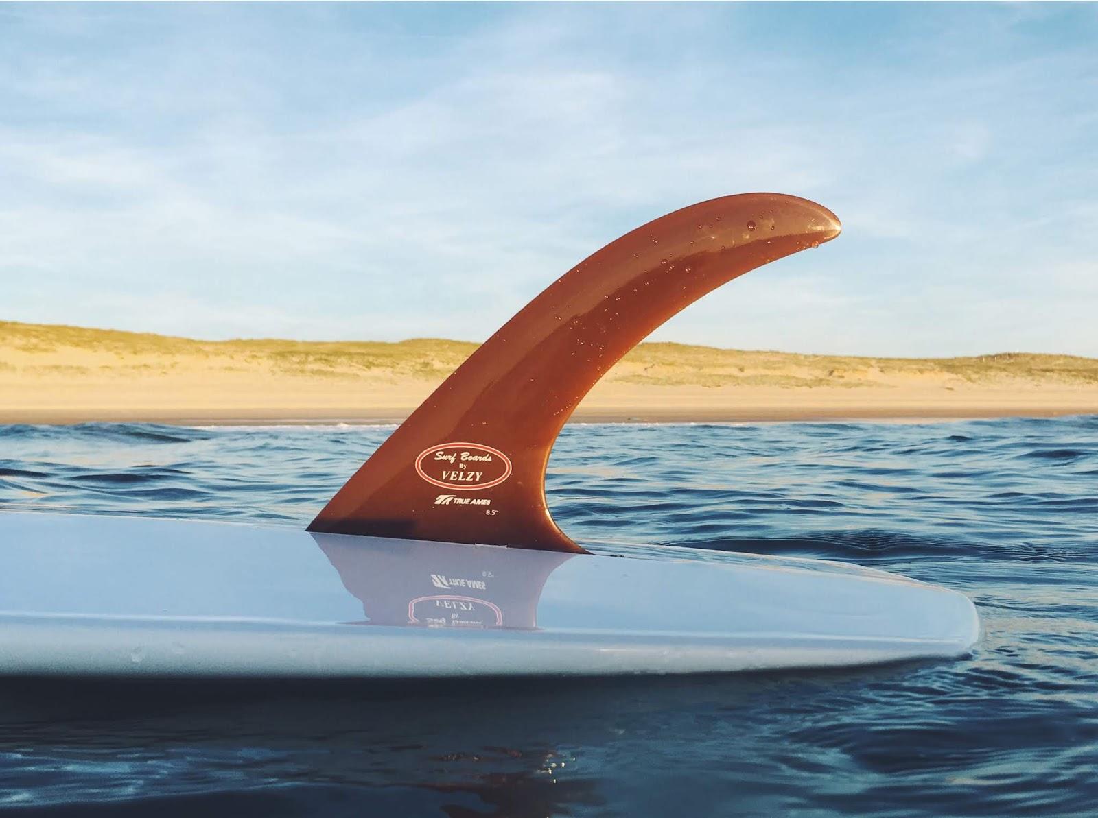 Surfin Estate Our Journal