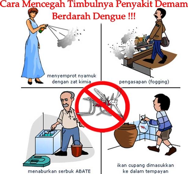 Cara Memberantas Penularan Nyamuk Demam Berdarah DBD ...