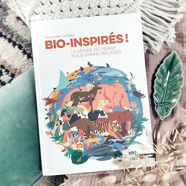 Bio-inspirés : Le monde du vivant nous donne des idées !
