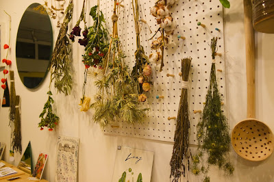 Botanical Illustration Class at Moonko Sheffield