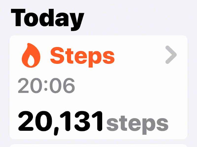 count, steps, iPhone