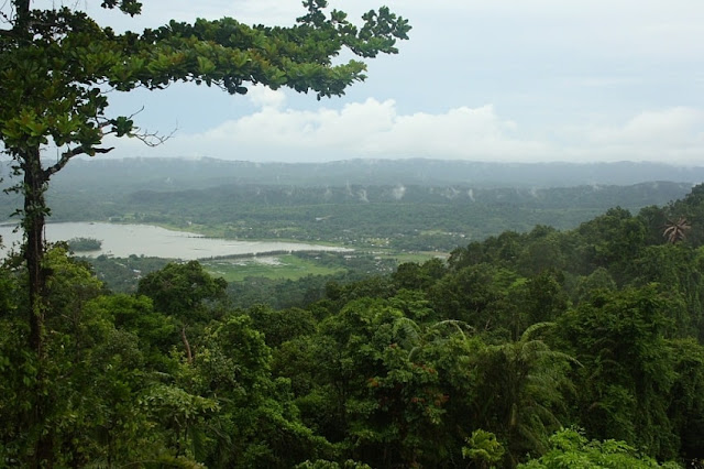 Mount Harriet National Park, Best Places to visit in Andaman & Nicobar