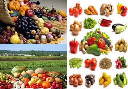 Reasons why eating seasonally is good for your health