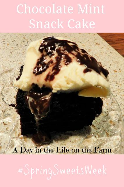 Deep Chocolate Mint Snack Cake pin