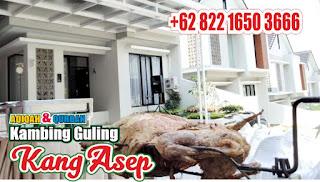 Rekomendasi Kambing Guling Muda Bandung, kambing guling muda bandung,  kambing guling bandung, kambing guling,