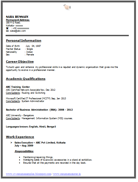 work experience cv english