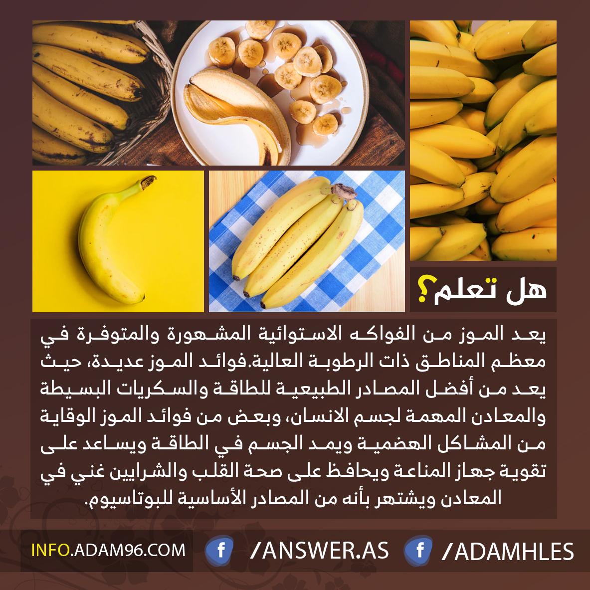 فوائد الموز