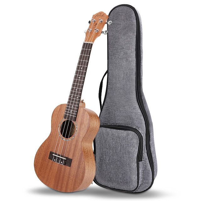Ranch Concert Ukulele UK-23 Beginner Kits