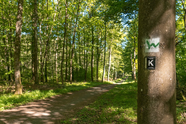Westerwaldsteig Etappe 6 von Freilingen nach Nistertal  Westerwälder Seenplatte – Stöffelpark 03