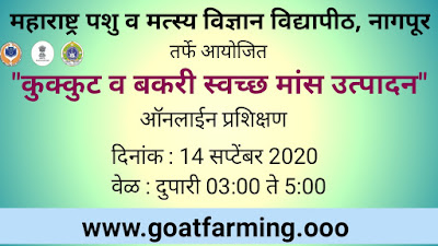 Online Webinar on Poultry and Goat Clean Meat Production