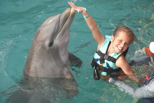 Terkenal Jinak Gadis Ini Malah Digigit dan Diseret Ikan Lumba-lumba
