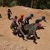 Tambang Emas Ilegal di Solok Sumbar Runtuh, Tewaskan 9 Orang
