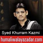 https://humaliwalaazadar.blogspot.com/2019/08/syed-khurram-kazmi-nohay-2020.html