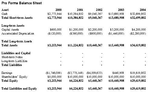 pro forma cash flow statement budget financial data analysis by