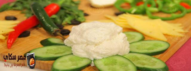 طريقتان لعمل خلطة الجبنة البيضاء فى المنزل بالصور make white cheese
