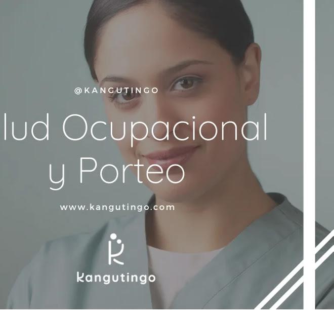 Salud Ocupacional y Porteo