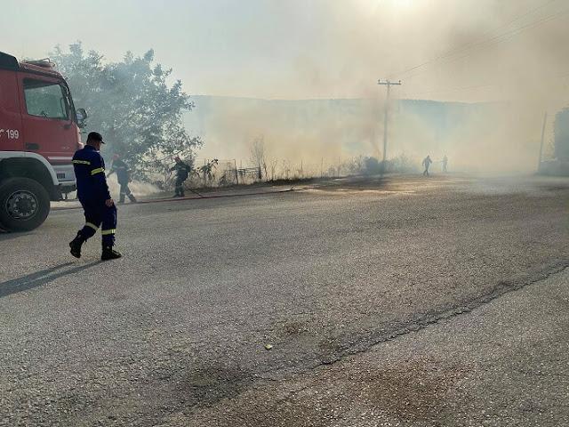 Η φωτιά είναι σε εξέλιξη.  Οι καπνοί έχουν καλύψει την περιοχή ενώ η μυρωδιά του καμένου έχει φτάσει μέχρι το κέντρο της πόλης.