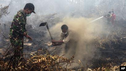Upaya Pemadaman Kebakaran Hutan