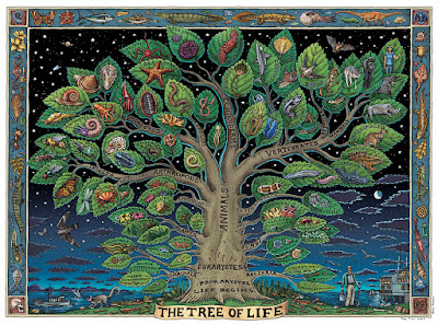 tree of life images
