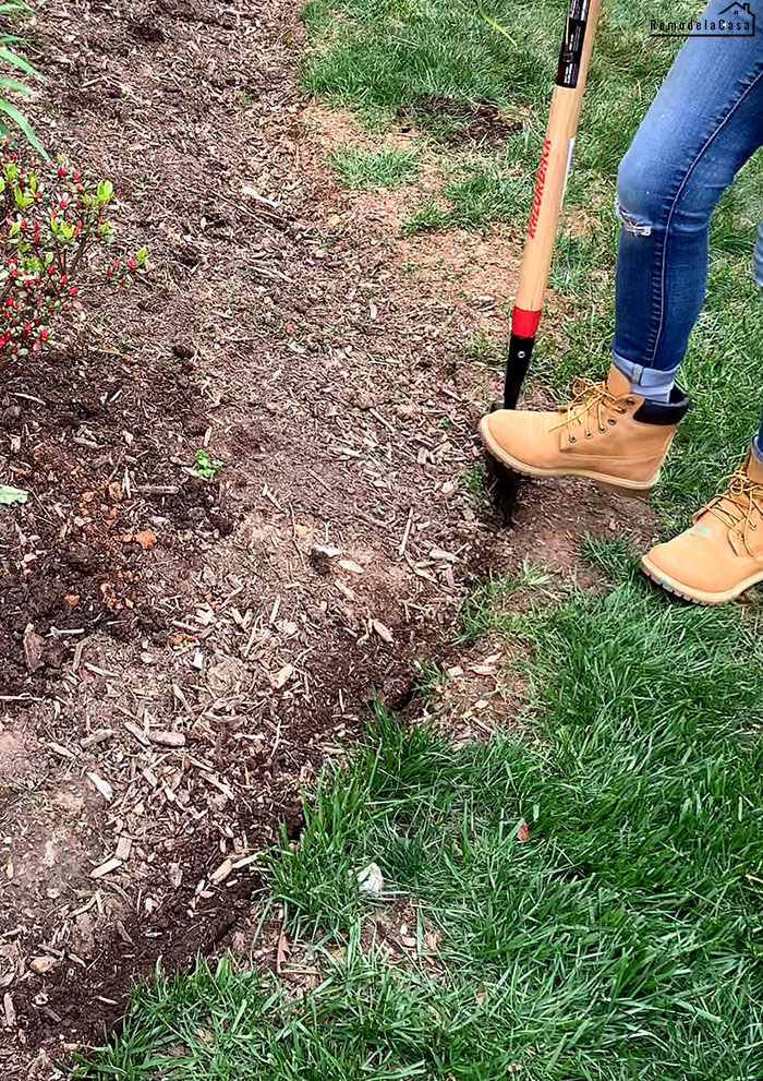How to edge flower beds like a pro