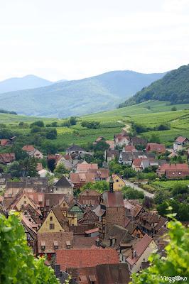 Vista panoramica di Riquewihr dai vigneti