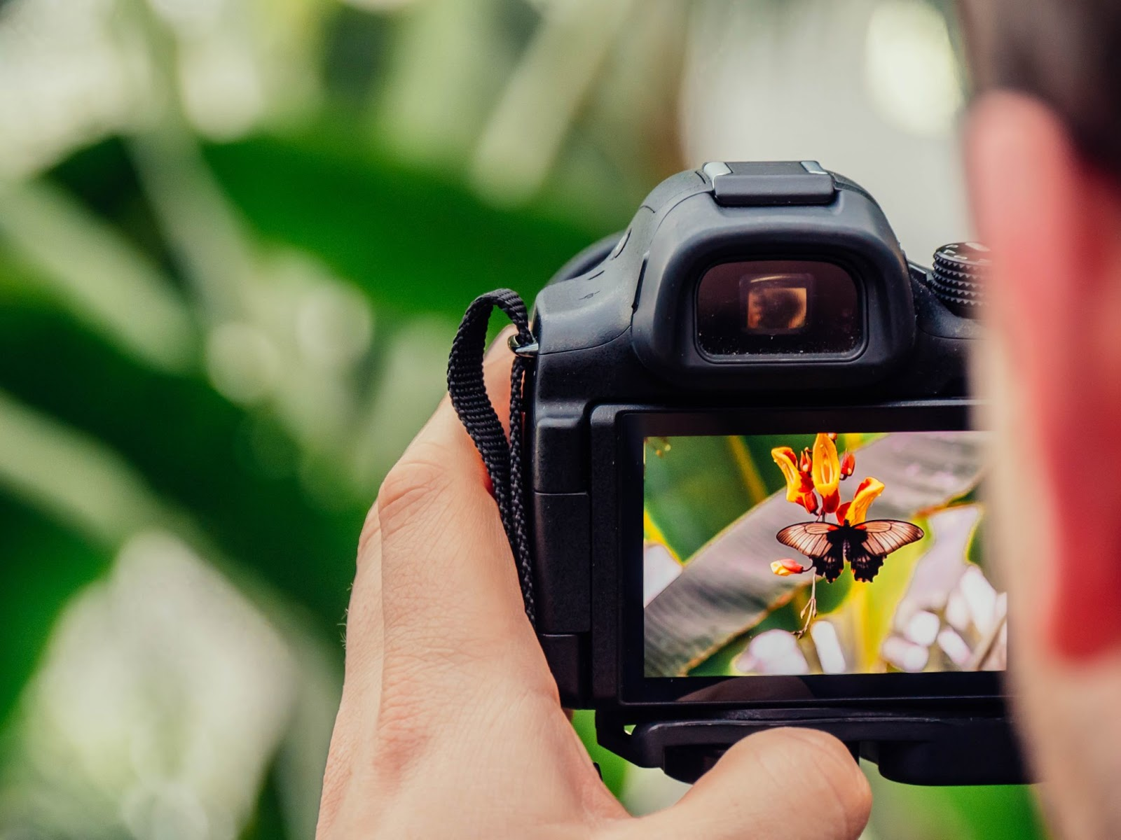 Cara Memegang Kamera