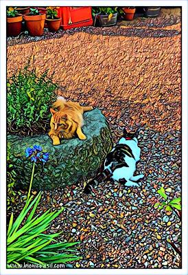 Fudge and Melvyn's Surveillance Selfie ©BionicBasil® Puzzle