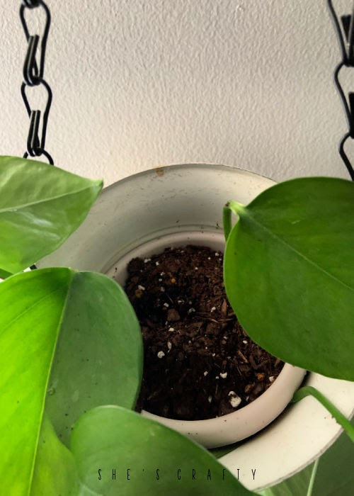 How to make a hanging plant holder from a metal piece.