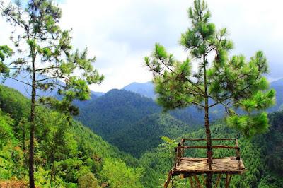 wisata alam rumah pohon banyu anyep karanganyar jawa tengah